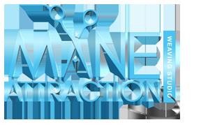 Mane-Attraction-logo-2-web copy